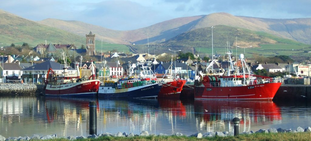 Ireland Self Drive Vacations - Dingle Harbour